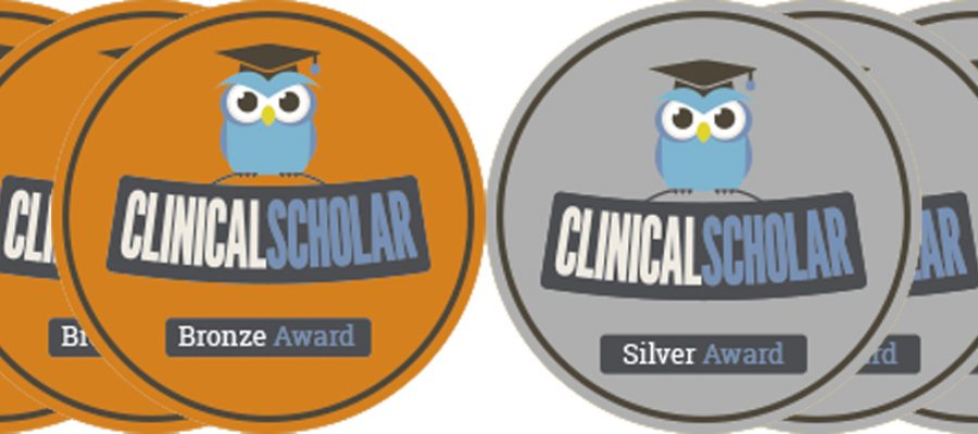 HEE/NIHR Clinical Scholars Bronze and Silver Awards