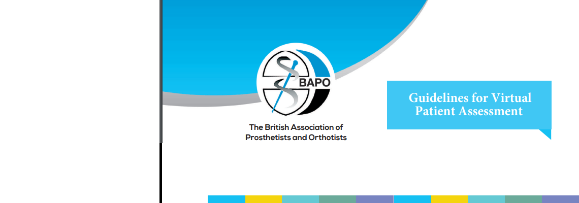 BAPO Guidelines for Virtual Patient Assessment